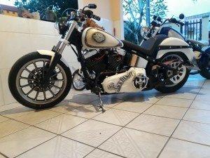 Harley Bronze